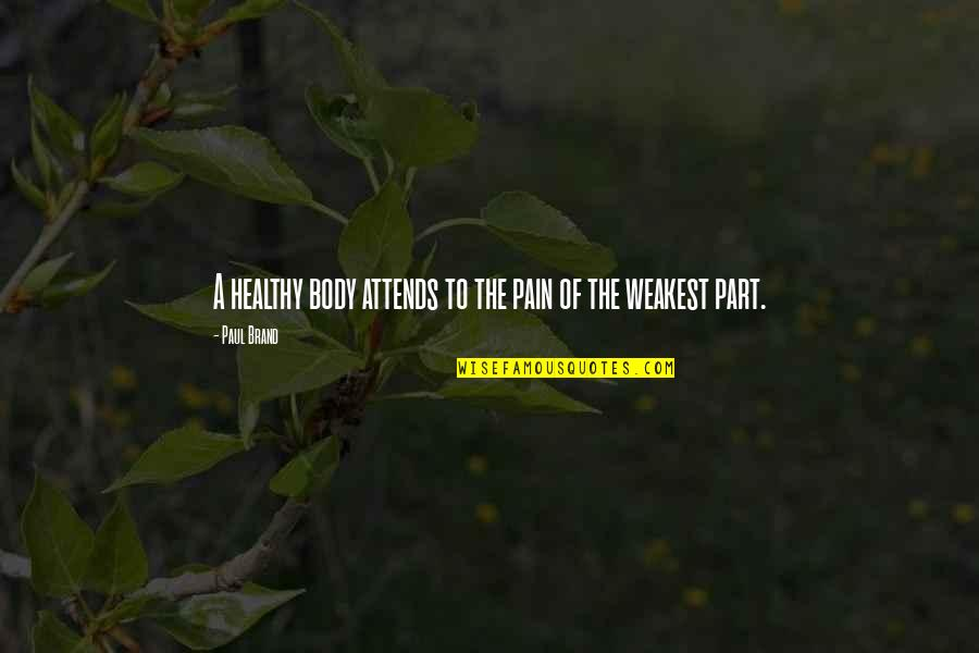 Body Part Quotes By Paul Brand: A healthy body attends to the pain of