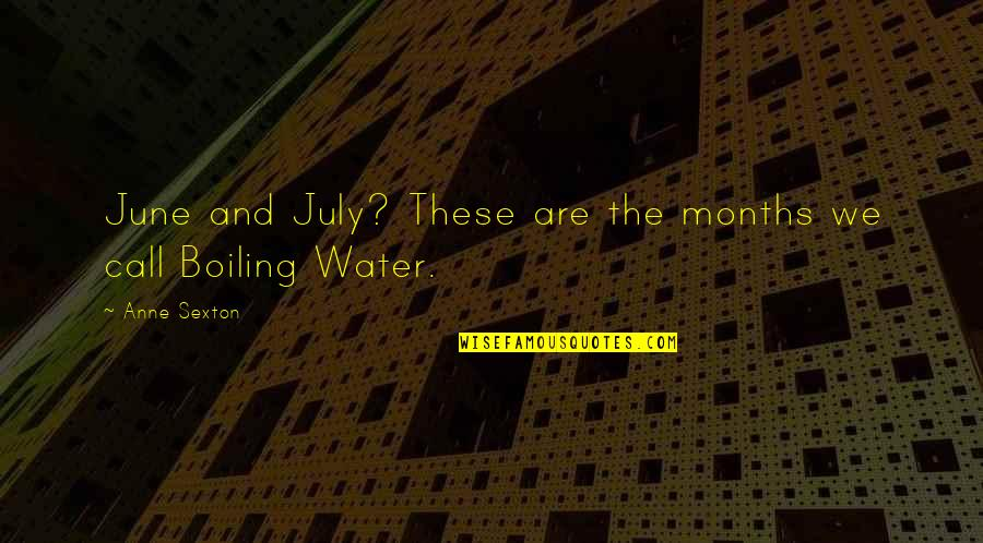 Boiling Quotes By Anne Sexton: June and July? These are the months we