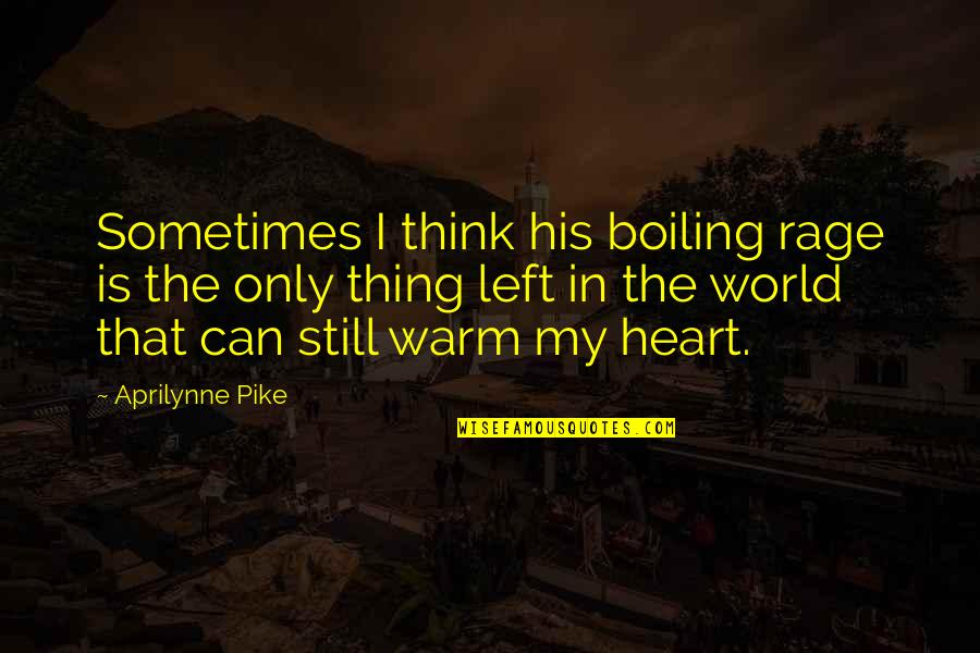 Boiling Quotes By Aprilynne Pike: Sometimes I think his boiling rage is the