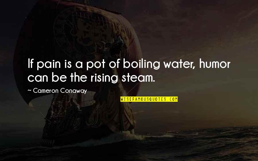 Boiling Quotes By Cameron Conaway: If pain is a pot of boiling water,
