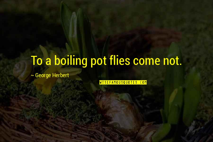 Boiling Quotes By George Herbert: To a boiling pot flies come not.