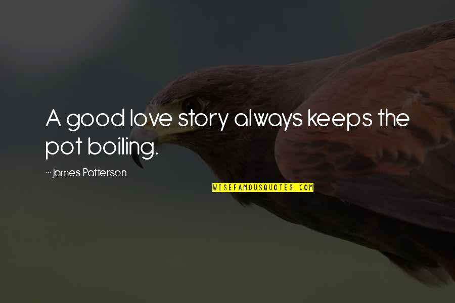 Boiling Quotes By James Patterson: A good love story always keeps the pot