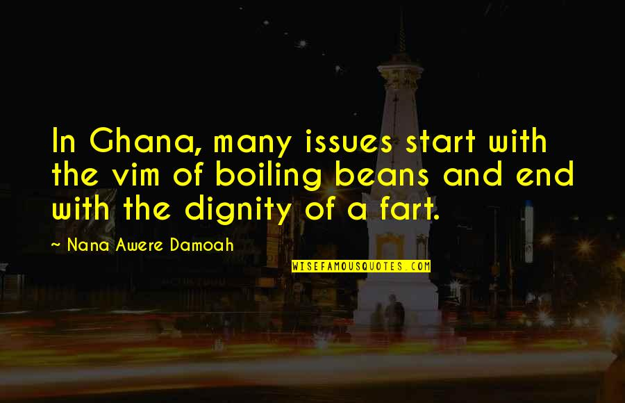 Boiling Quotes By Nana Awere Damoah: In Ghana, many issues start with the vim