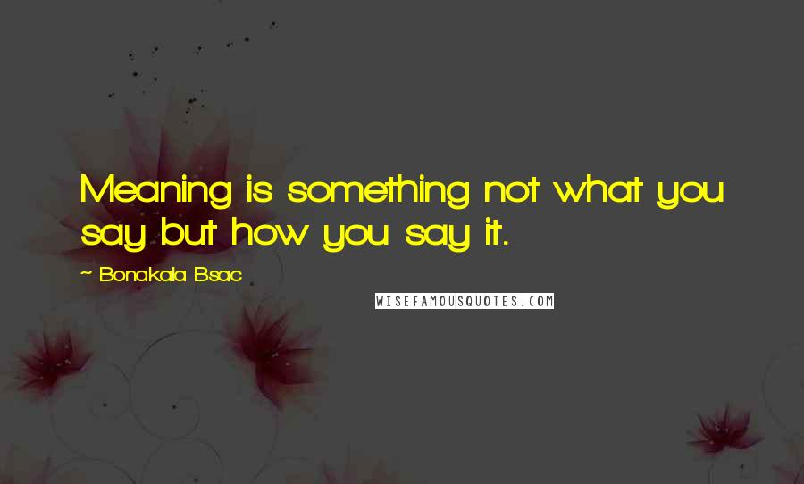 Bonakala Bsac quotes: Meaning is something not what you say but how you say it.