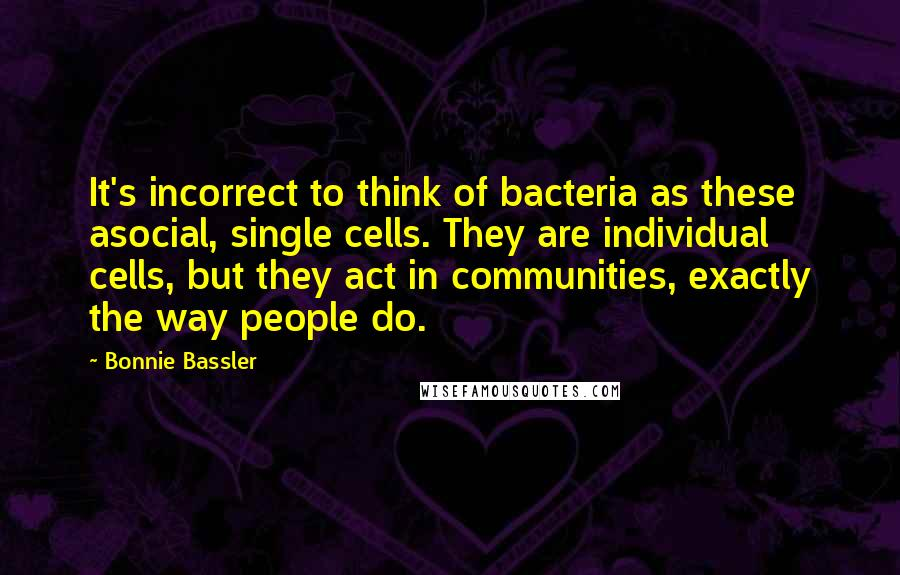 Bonnie Bassler quotes: It's incorrect to think of bacteria as these asocial, single cells. They are individual cells, but they act in communities, exactly the way people do.