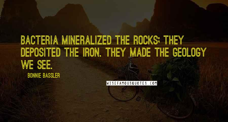 Bonnie Bassler quotes: Bacteria mineralized the rocks; they deposited the iron. They made the geology we see.