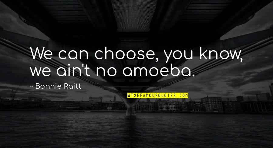 Bonnie Raitt Quotes By Bonnie Raitt: We can choose, you know, we ain't no