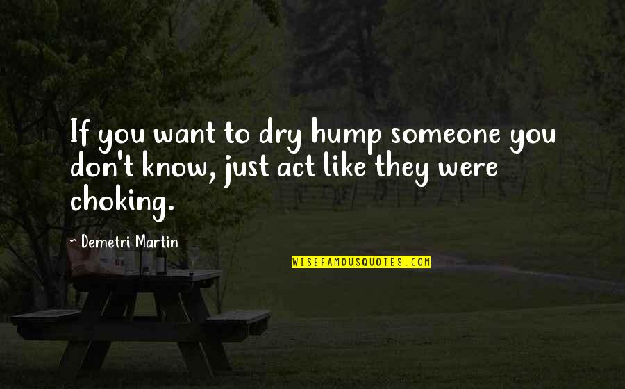 Bonus Stage Quotes By Demetri Martin: If you want to dry hump someone you
