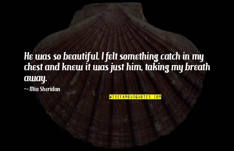 Book Launching Quotes By Mia Sheridan: He was so beautiful. I felt something catch