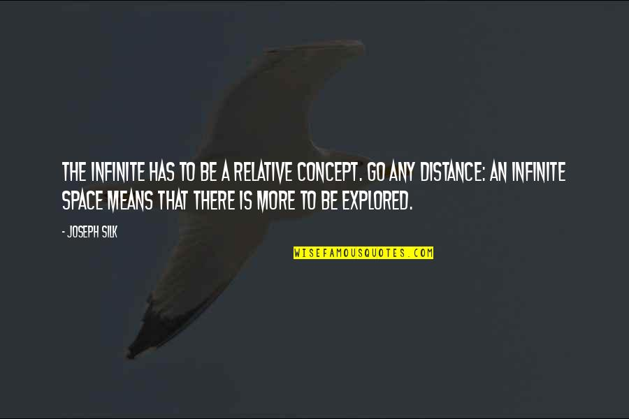 Bookkeeper Quotes By Joseph Silk: The Infinite has to be a relative concept.
