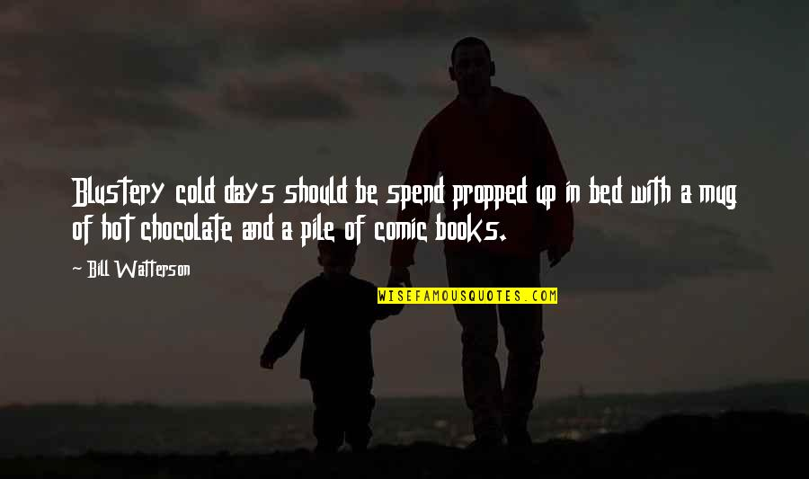 Books And Chocolate Quotes By Bill Watterson: Blustery cold days should be spend propped up