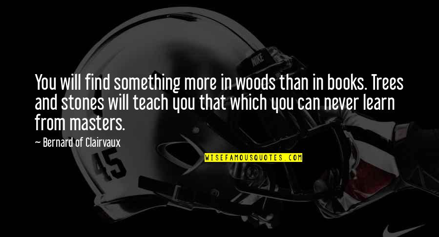 Books And Trees Quotes By Bernard Of Clairvaux: You will find something more in woods than