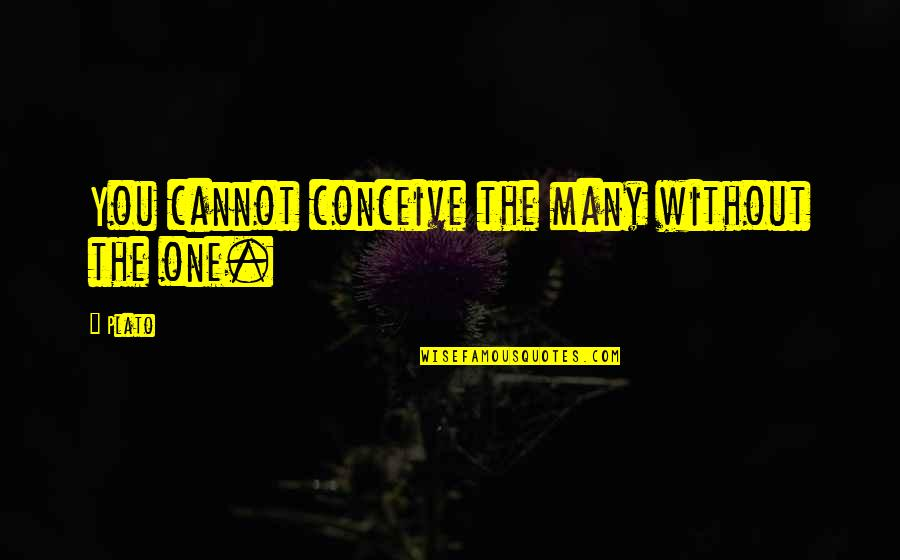 Bootalicious Quotes By Plato: You cannot conceive the many without the one.