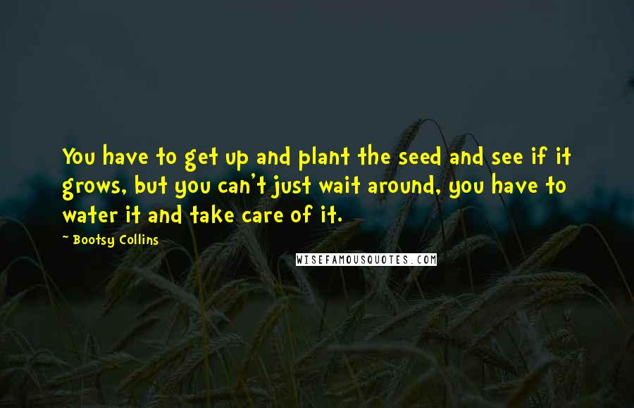Bootsy Collins quotes: You have to get up and plant the seed and see if it grows, but you can't just wait around, you have to water it and take care of it.