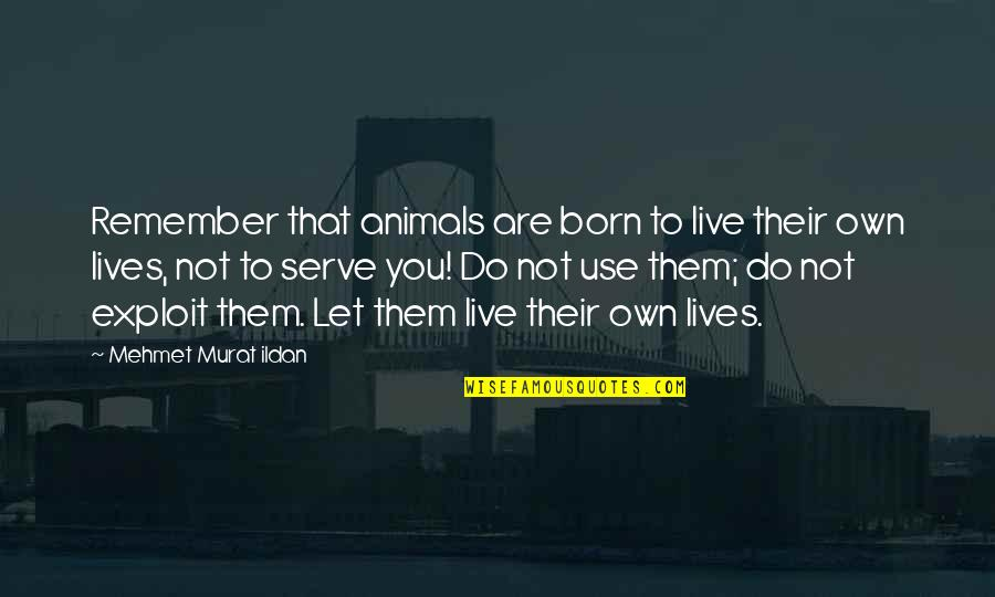 Born To Live Quotes By Mehmet Murat Ildan: Remember that animals are born to live their