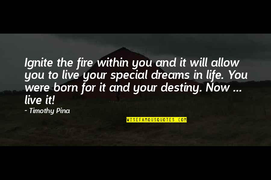 Born To Live Quotes By Timothy Pina: Ignite the fire within you and it will