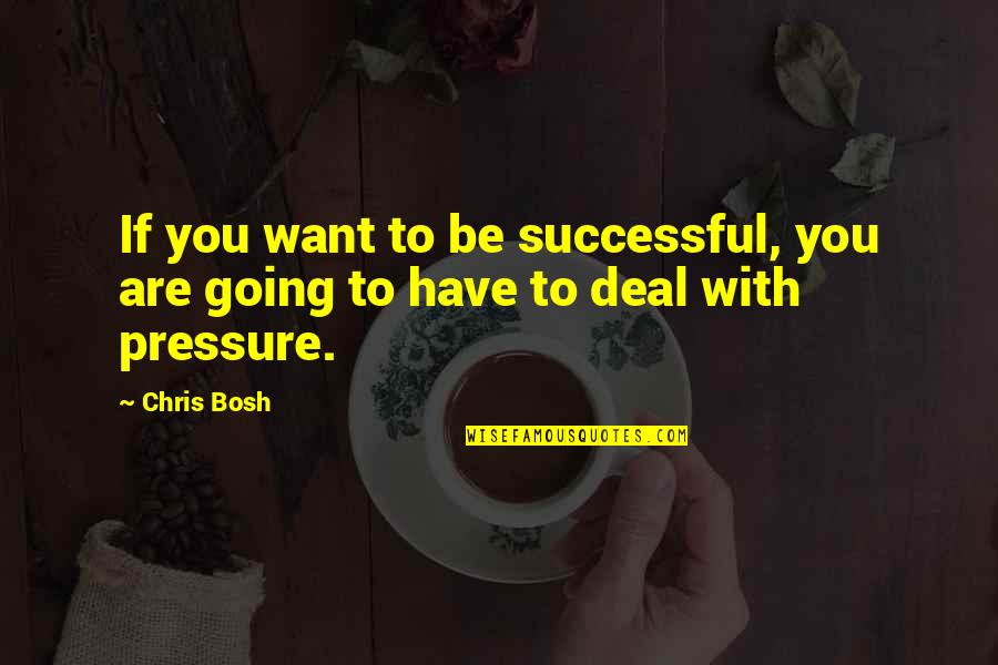 Bosh'tet Quotes By Chris Bosh: If you want to be successful, you are