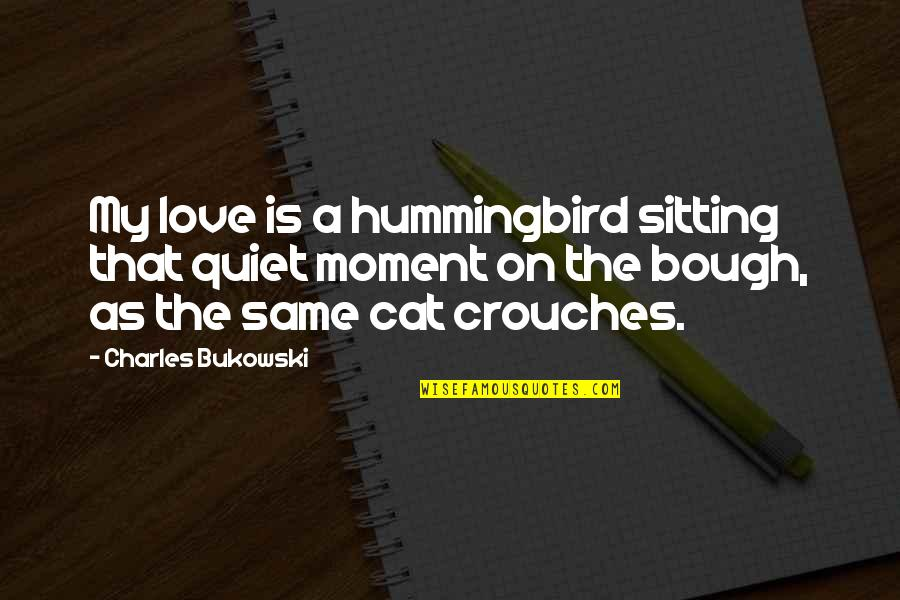 Bough Quotes By Charles Bukowski: My love is a hummingbird sitting that quiet