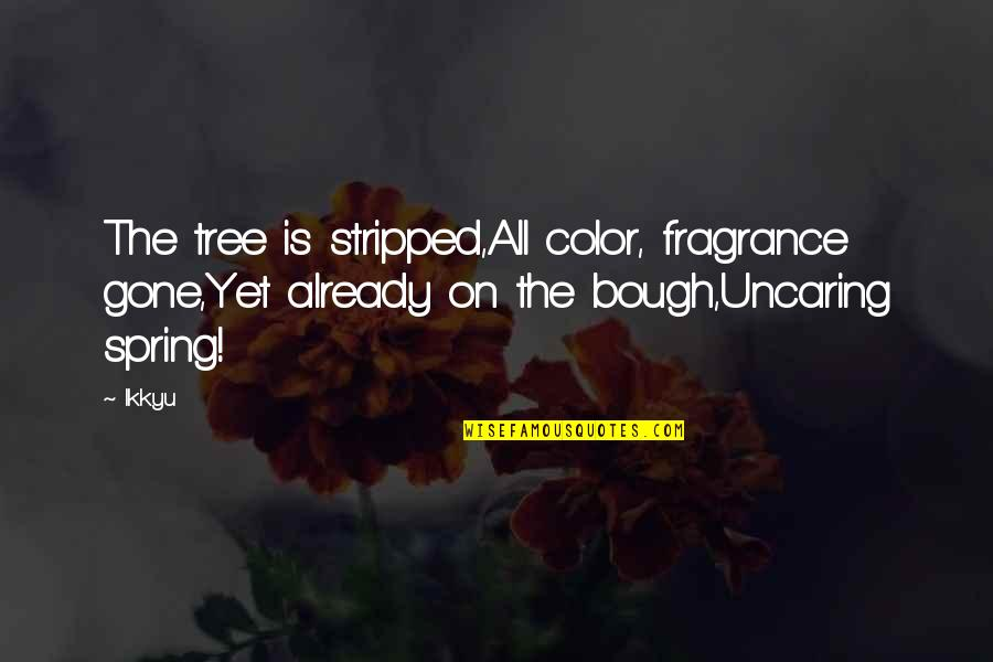 Bough Quotes By Ikkyu: The tree is stripped,All color, fragrance gone,Yet already