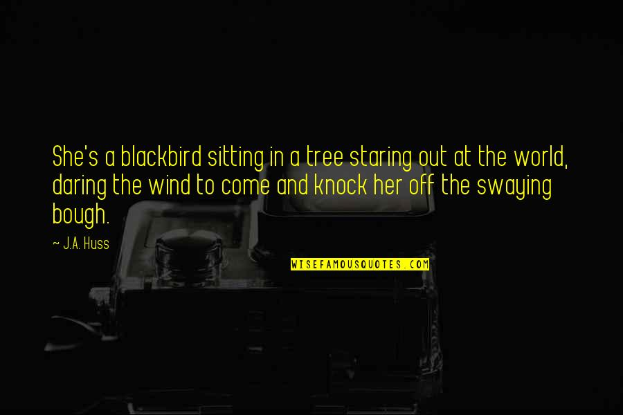 Bough Quotes By J.A. Huss: She's a blackbird sitting in a tree staring