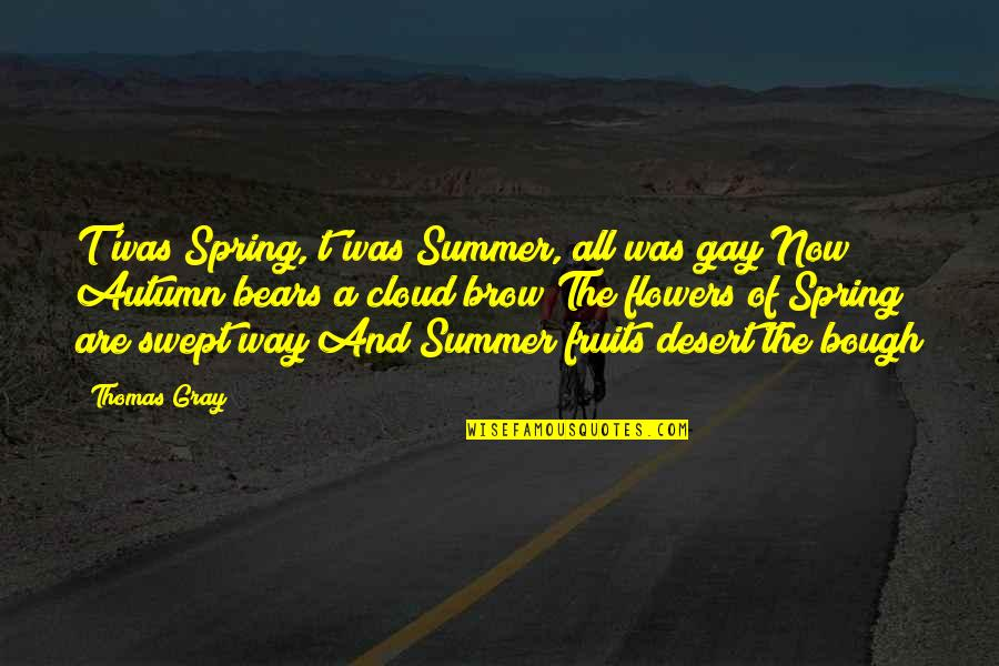 Bough Quotes By Thomas Gray: T'was Spring, t'was Summer, all was gay Now