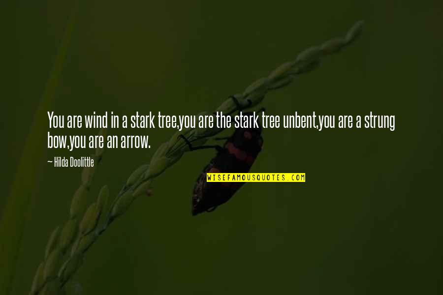 Bow And Arrow Quotes By Hilda Doolittle: You are wind in a stark tree,you are