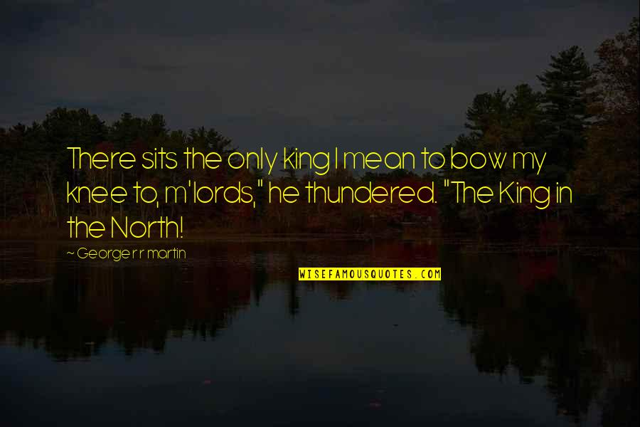 Bow Quotes By George R R Martin: There sits the only king I mean to