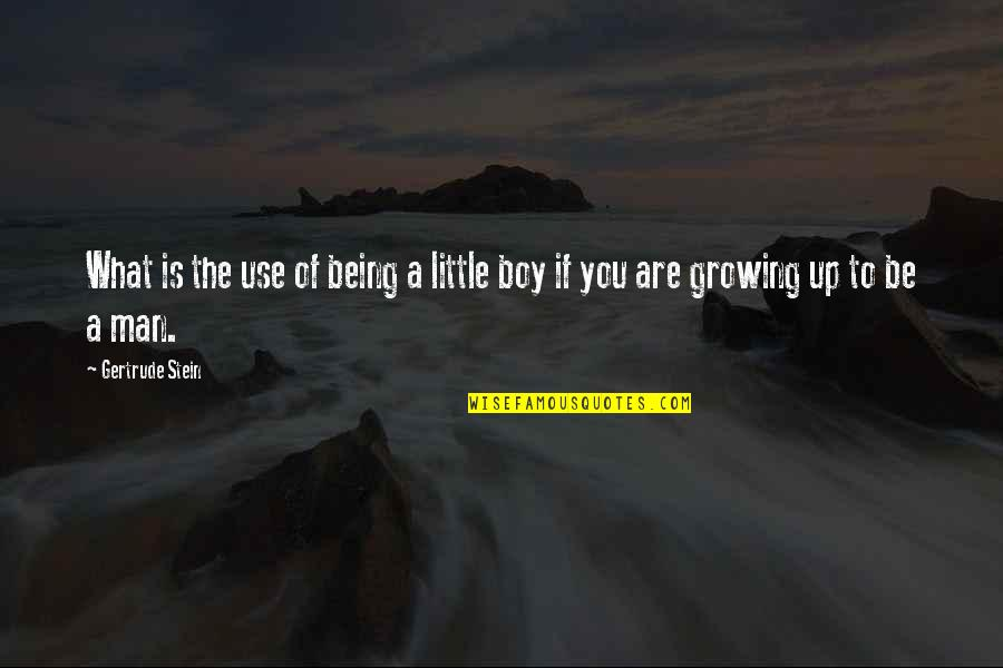 Boy To Man Quotes By Gertrude Stein: What is the use of being a little