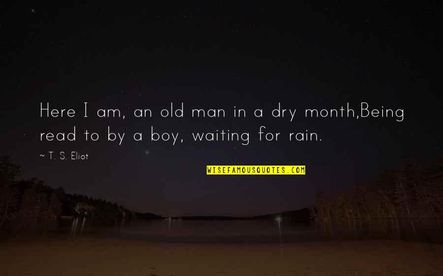 Boy To Man Quotes By T. S. Eliot: Here I am, an old man in a