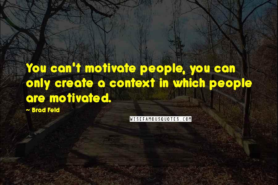 Brad Feld quotes: You can't motivate people, you can only create a context in which people are motivated.