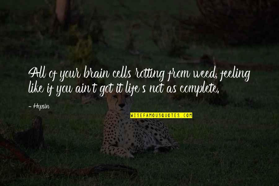 Brain Cells Quotes By Hopsin: All of your brain cells rotting from weed,