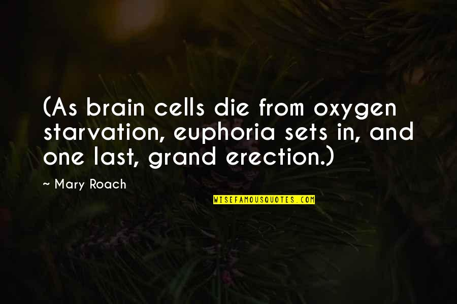 Brain Cells Quotes By Mary Roach: (As brain cells die from oxygen starvation, euphoria