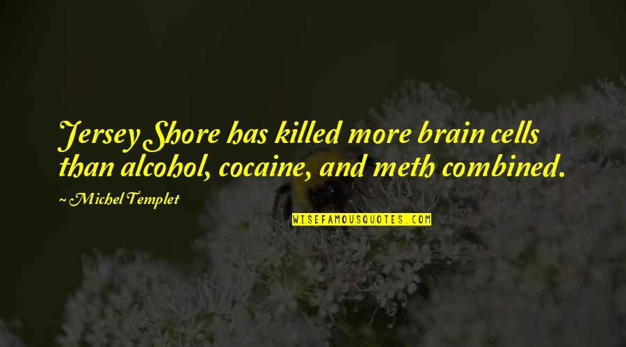 Brain Cells Quotes By Michel Templet: Jersey Shore has killed more brain cells than