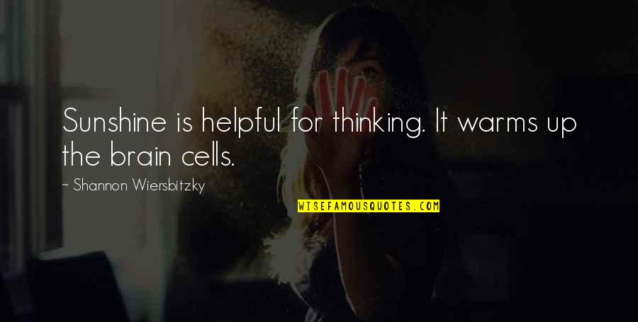 Brain Cells Quotes By Shannon Wiersbitzky: Sunshine is helpful for thinking. It warms up