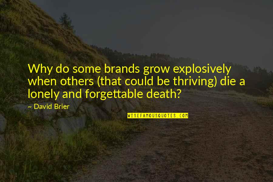 Brand Marketing Quotes By David Brier: Why do some brands grow explosively when others
