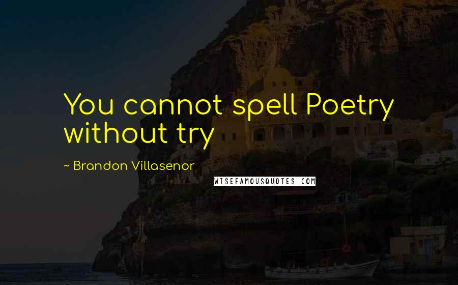 Brandon Villasenor quotes: You cannot spell Poetry without try