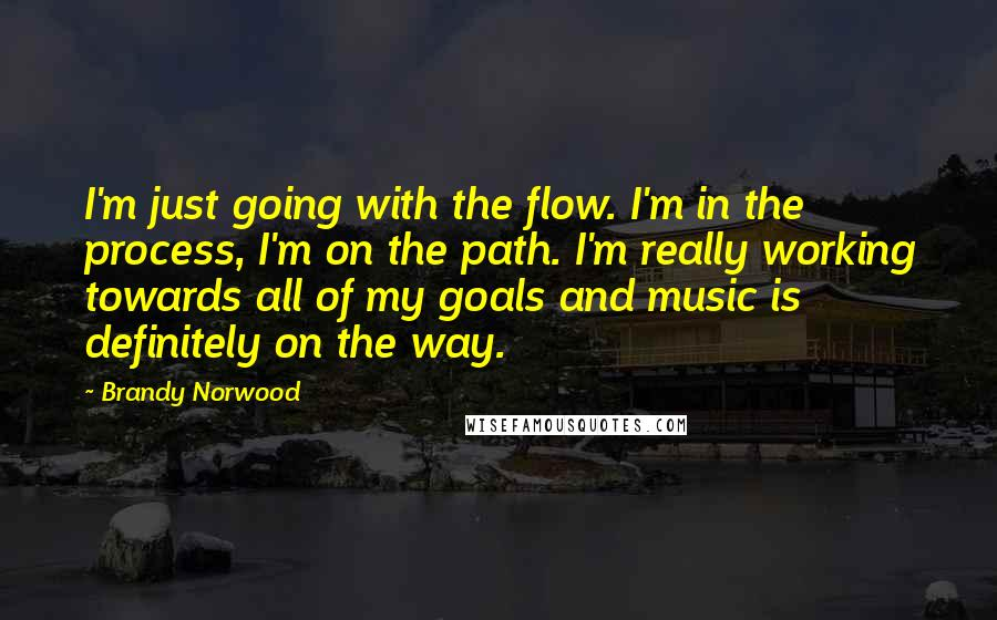 Brandy Norwood quotes: I'm just going with the flow. I'm in the process, I'm on the path. I'm really working towards all of my goals and music is definitely on the way.