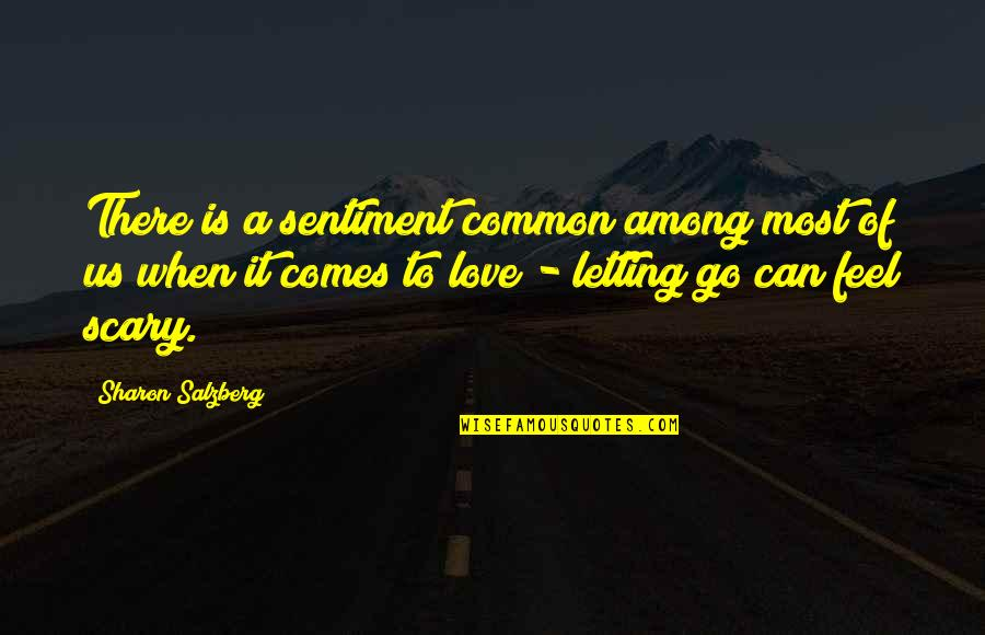 Bravery Love Quotes By Sharon Salzberg: There is a sentiment common among most of