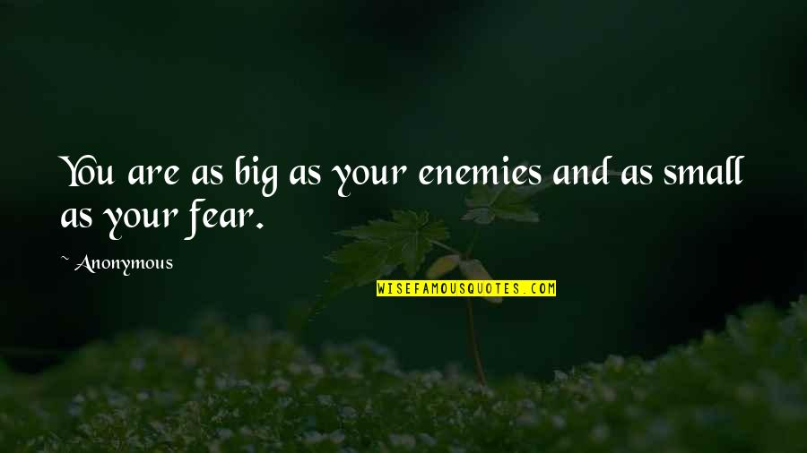 Bravery Quotes By Anonymous: You are as big as your enemies and