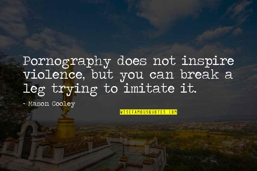 Break Leg Quotes By Mason Cooley: Pornography does not inspire violence, but you can