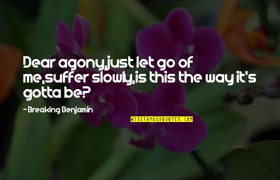 Breaking Benjamin Quotes By Breaking Benjamin: Dear agony,just let go of me,suffer slowly,is this