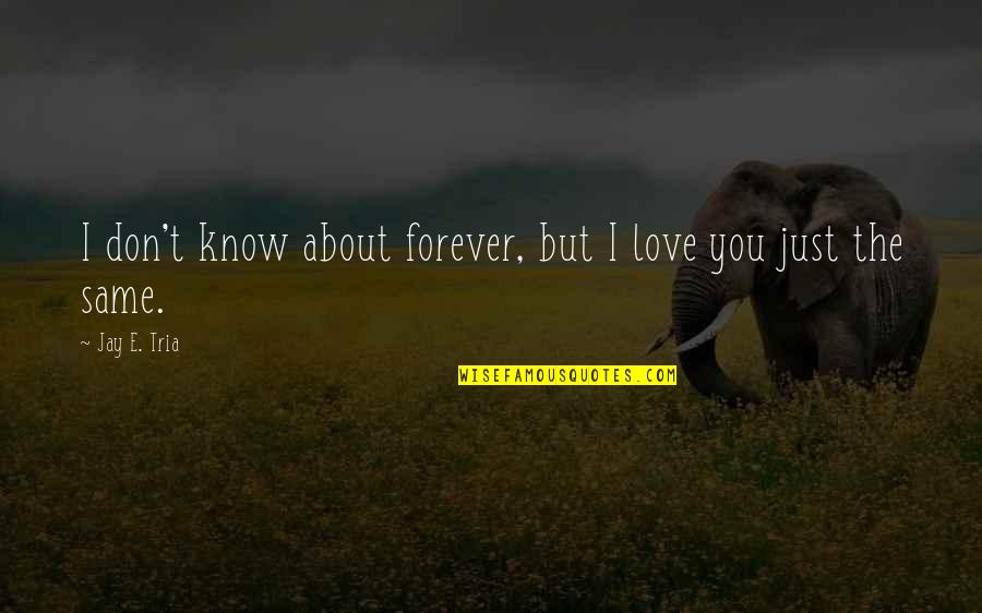 Breakups And Moving Quotes By Jay E. Tria: I don't know about forever, but I love