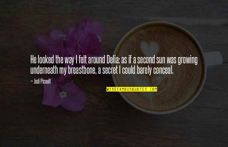 Breastbone Quotes By Jodi Picoult: He looked the way I felt around Delia: