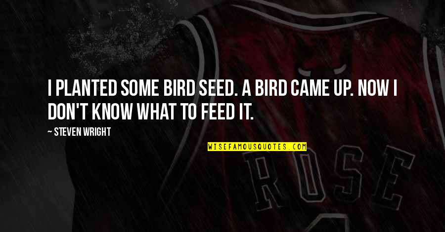 Brekfast Quotes By Steven Wright: I planted some bird seed. A bird came