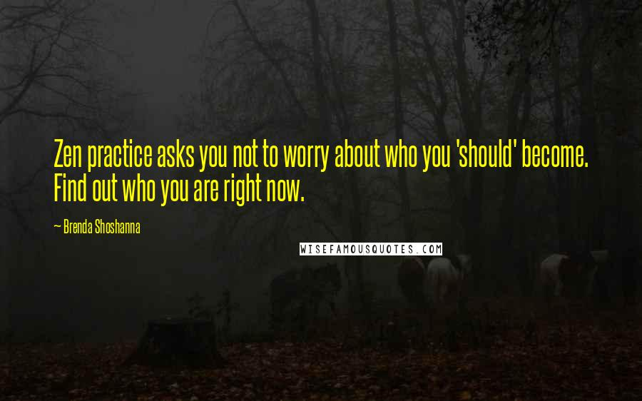 Brenda Shoshanna quotes: Zen practice asks you not to worry about who you 'should' become. Find out who you are right now.
