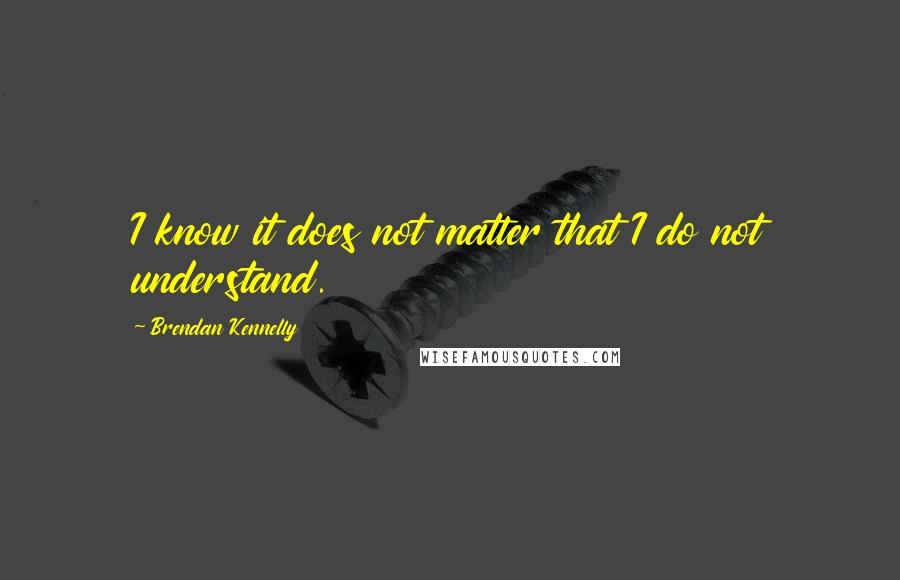 Brendan Kennelly quotes: I know it does not matter that I do not understand.