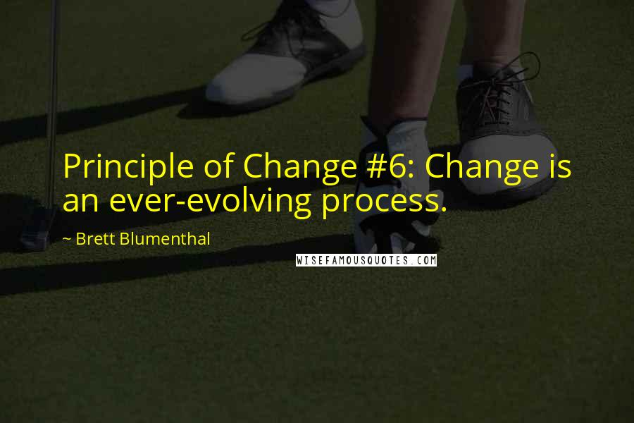 Brett Blumenthal quotes: Principle of Change #6: Change is an ever-evolving process.