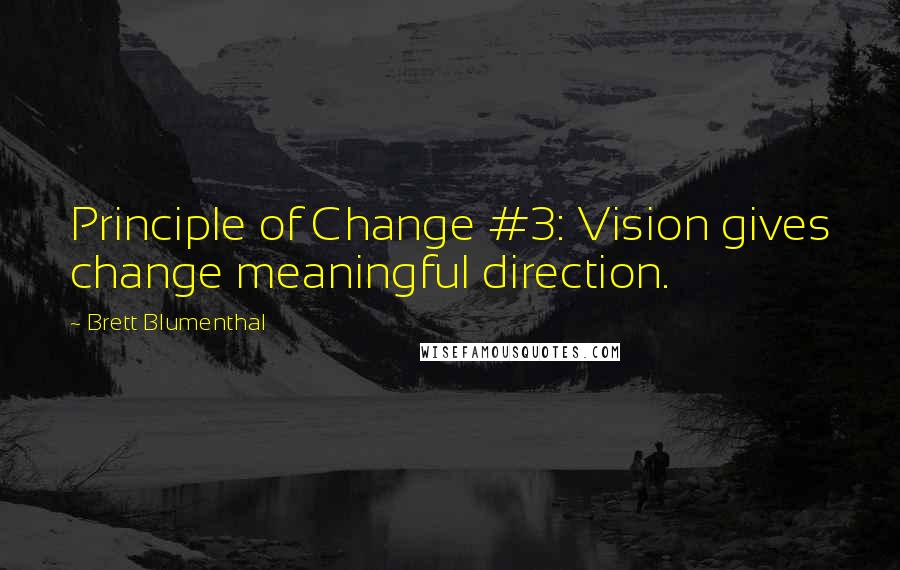 Brett Blumenthal quotes: Principle of Change #3: Vision gives change meaningful direction.