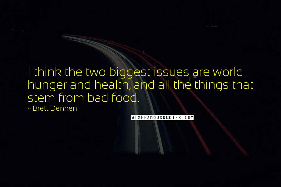 Brett Dennen quotes: I think the two biggest issues are world hunger and health, and all the things that stem from bad food.