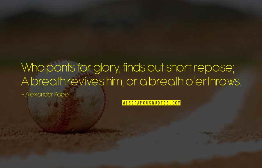 Brett The Sun Also Rises Quotes By Alexander Pope: Who pants for glory, finds but short repose;